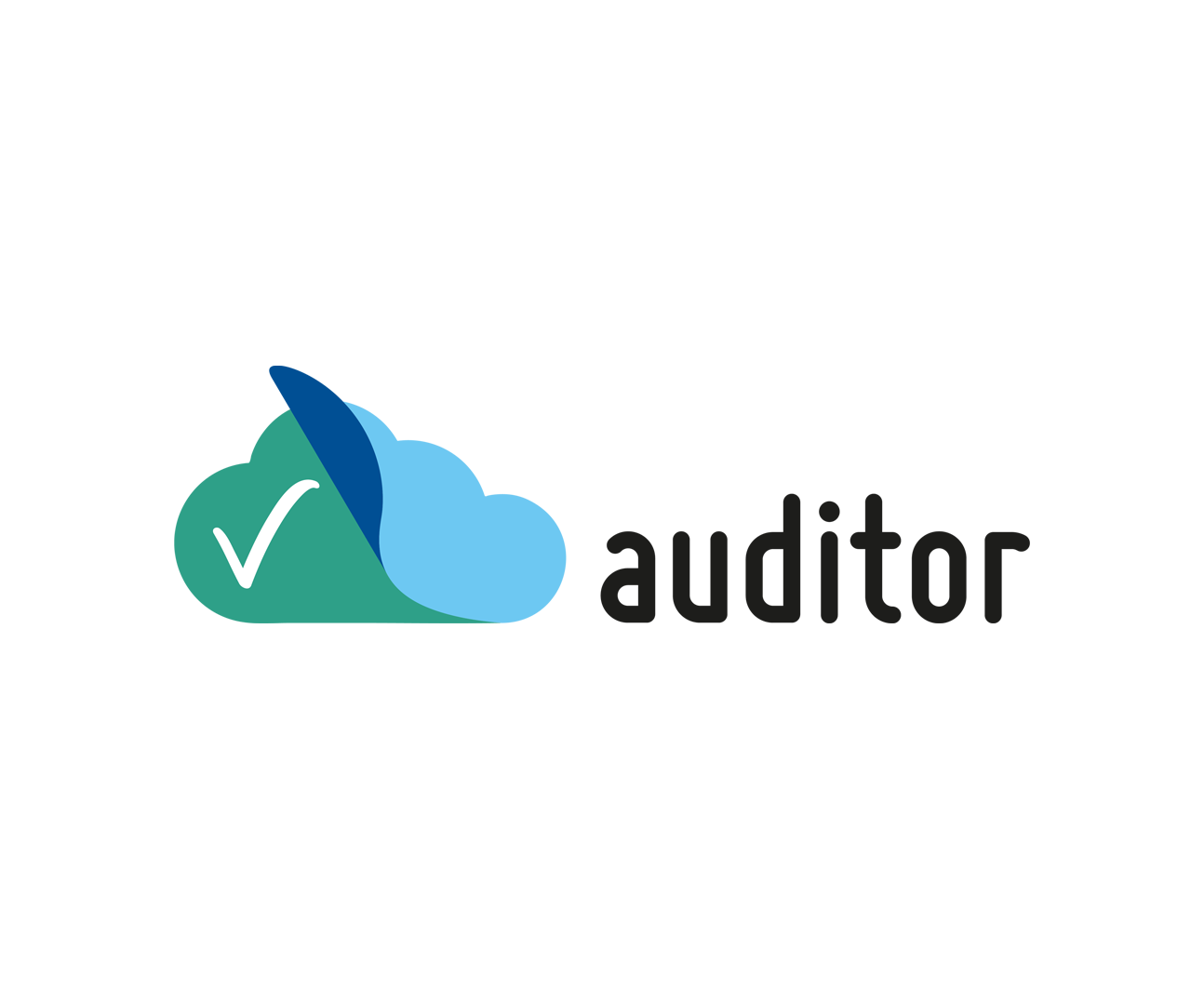 www.auditor-cert.de